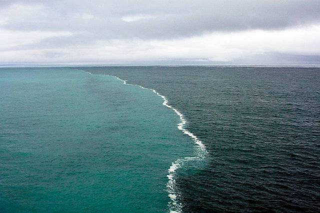 gulf of alaska two oceans meet but dont mix steroids