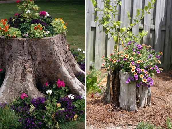 3-ways-to-decorate-old-tree-stumps-in-garden-1