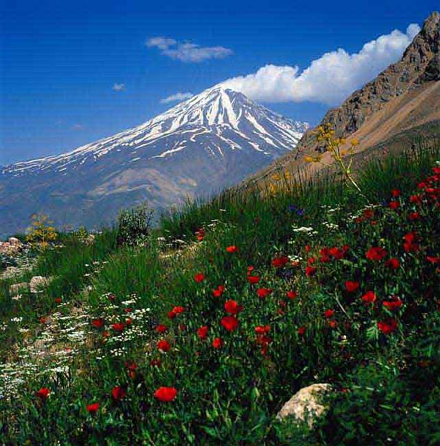 naturea-damavand