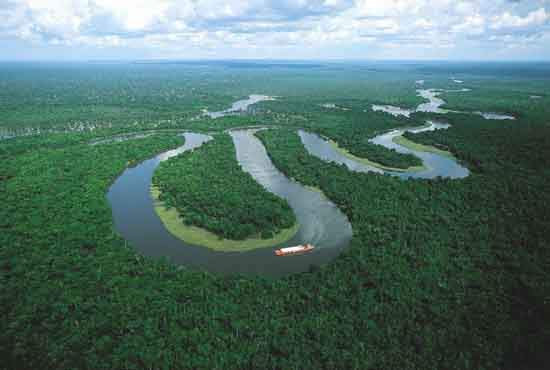 http://mixstuff.ru/wp-content/uploads/2013/07/amazon-river-boat-cruises.jpg