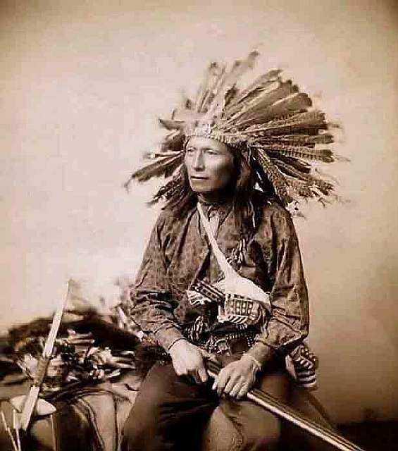 12 Sioux Chief