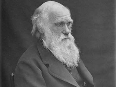 explorer-charles-darwin-ate-most-of-the-animals-he-discovered