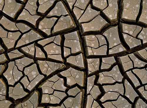 mud-cracks-979293-xl-990x728