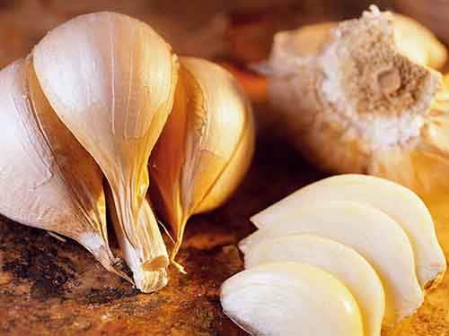 11foodnews-garlic