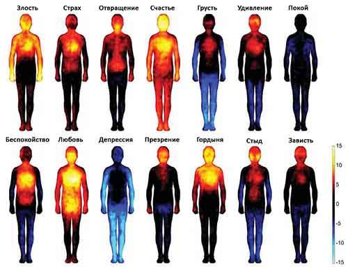 11emotion-heatmap-body-atlas-1