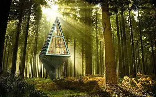 3026163-slide-s-tree-house-03