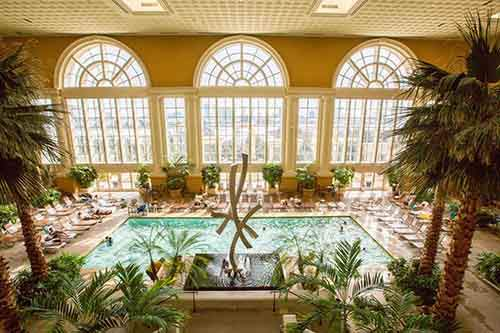 and-dont-miss-out-on-the-impressive-pool-surrounded-by-palm-trees