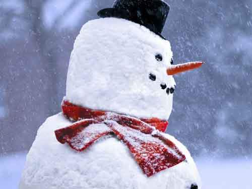 Snowman with hat, scarf, carrot, and buttons.