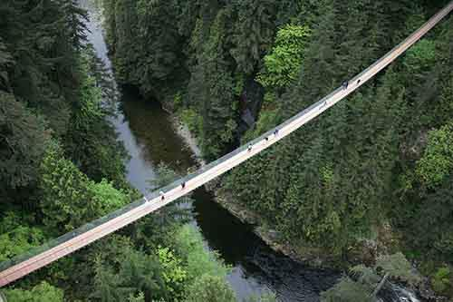 Capilano-Suspension-Bridge-Park-1