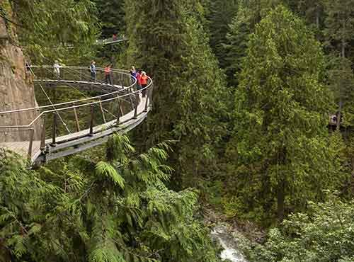 Capilano-Suspension-Bridge-Park-3