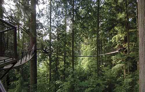 Capilano-Suspension-Bridge-Park-5