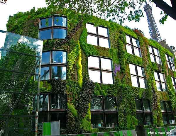 Vertical Garden in Paris