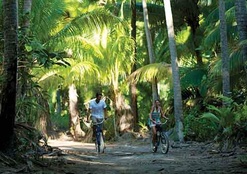 and-use-their-personal-bicycles-for-exploring-the-paths-around-the-island-or-riding-to-picnic-on-a-different-beach