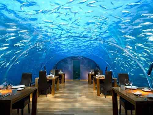 item1.rendition.slideshowwidehorizontal.ithaa-underwater-restaurant-conrad-maldives
