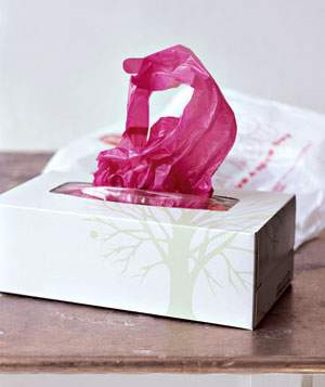 old-kleenex-box-as-bag-dispenser