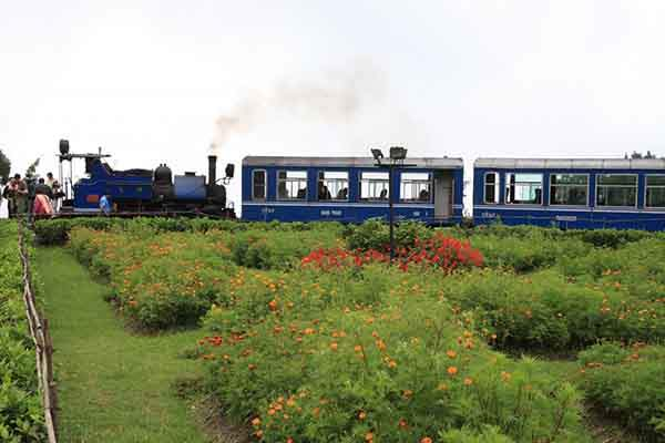 the-darjeeling-himalayan-railway-is-known-as-the-toy-train-and-travels-from-new-jalpaiguri-at-an-elevation-of-328-feet-to-darjeeling-at-7218-feet