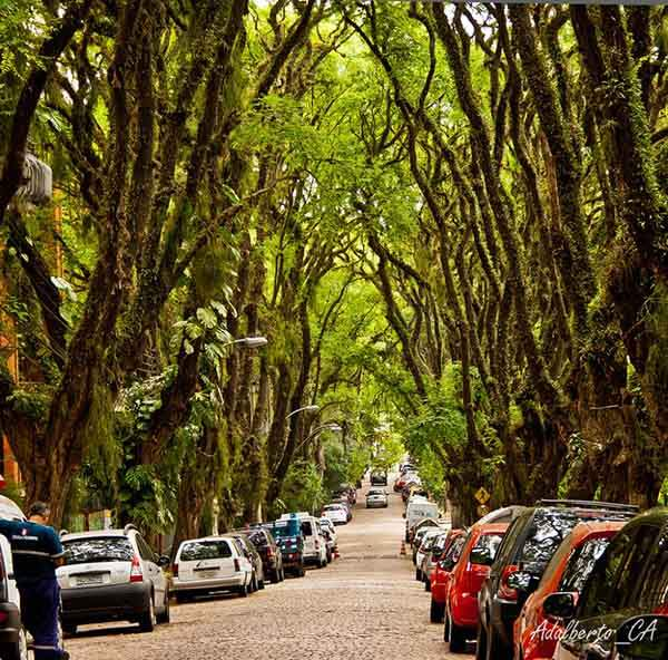 i-want-to-visit-brazil-15