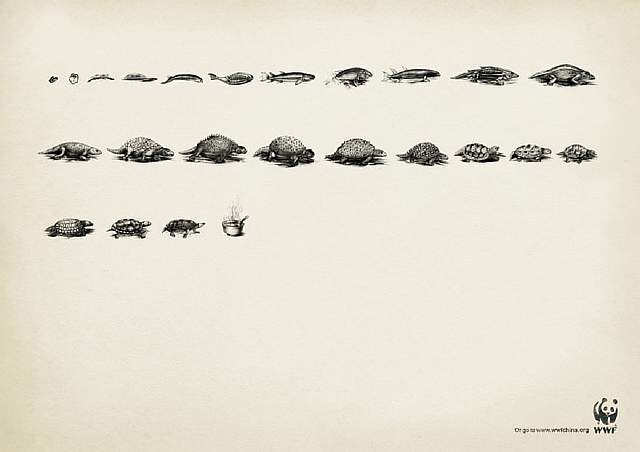 public-social-ads-animals-55