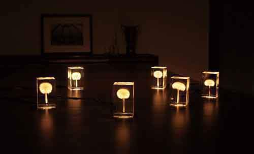 creative-lamps-chandeliers-4-2