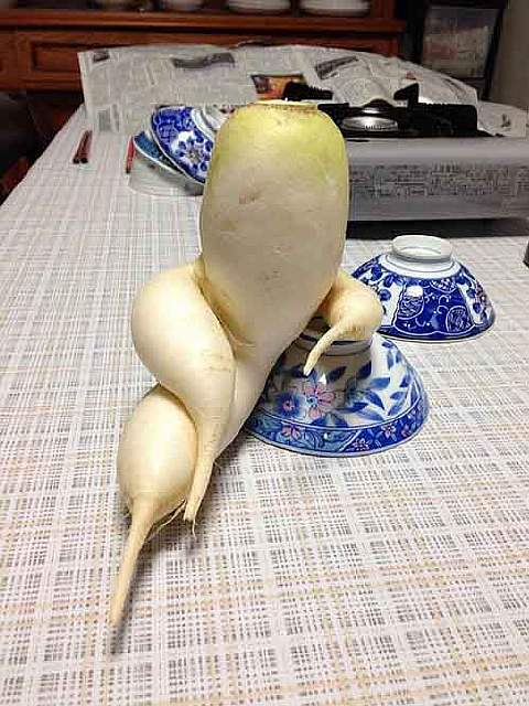 funny-shaped-vegetables-fruits-1-1-620x