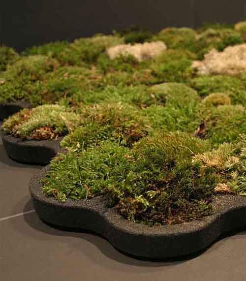 green-design-ideas-inspired-by-nature-2-2-1