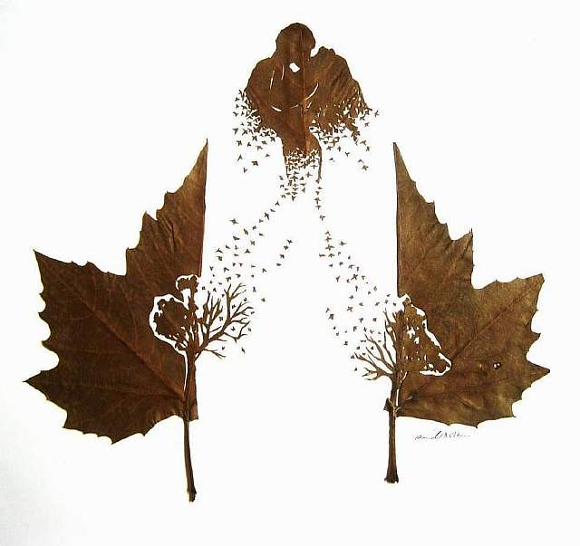 leaf-cutting-omid-asadi-12