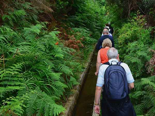 madeira-is-full-of-levadas-a-system-of-stone-irrigation-channels-that-criss-cross-the-island-and-transport-water-these-levadas-also-make-for-great-hiking-trails