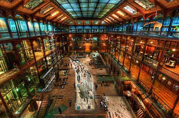 The Secret Lair of Jules Verne-X2