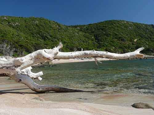 camp-out-on-a-secluded-beach-on-the-island-of-corsica