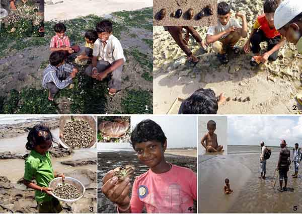 paresh-poriya-shows-the-way-communities-in-western-india-depend-on-coastal-areas-for-food-in-summer-and-pre-monsoon-seasons
