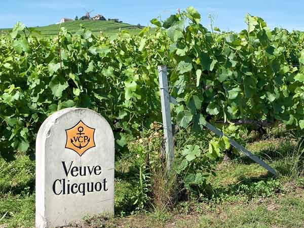 taste-champagne-in-the-champagne-region