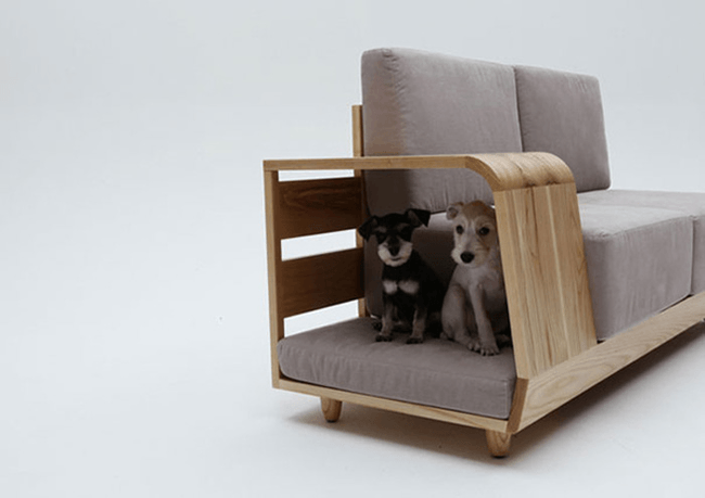 dog_house_sofa