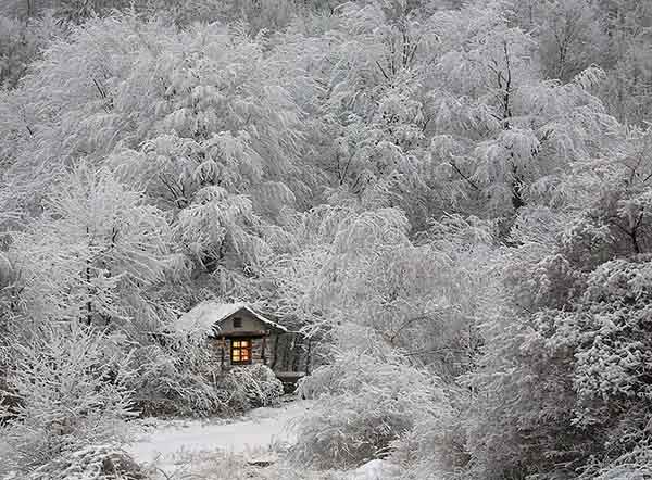 tiny-house-fairytale-nature-landscape-photography-25__880