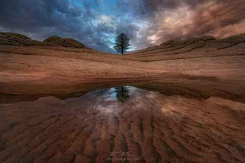 20-photos-of-unbelievable-nature-artnaz-com-17