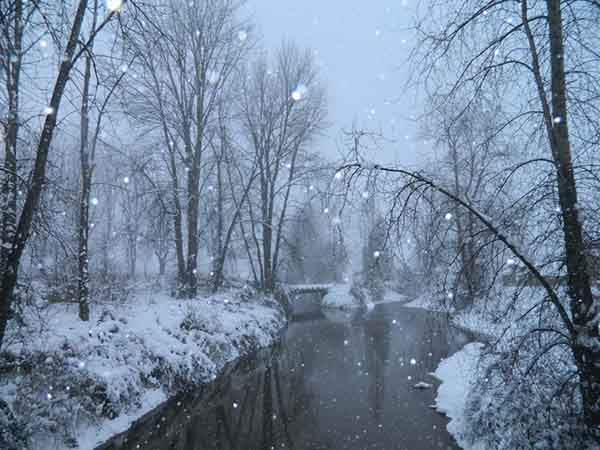 winter_wonderland_by_i_mattais_id4mox9w