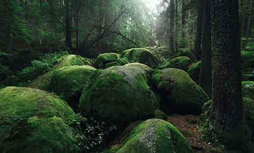 brothers-grimm-wanderings-landscape-photography-kilian-schonberger-12
