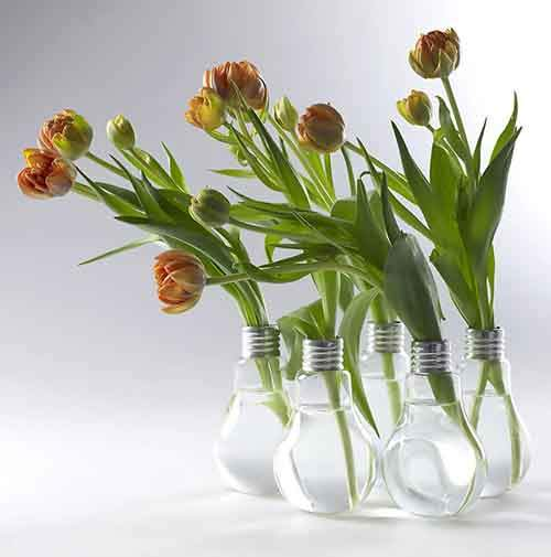 ideas-for-recycling-light-bulbs-2__880