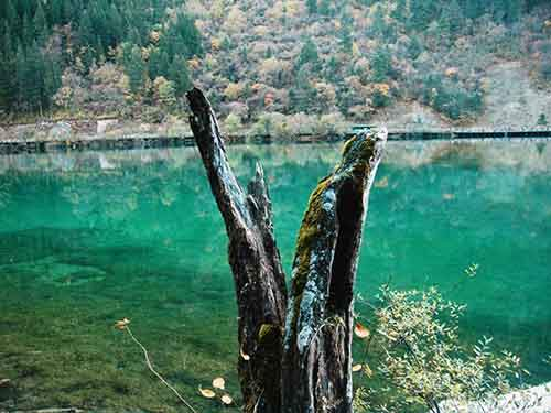 hike-through-the-yellowstone-of-china-jiuzhaigou-natural-reserve