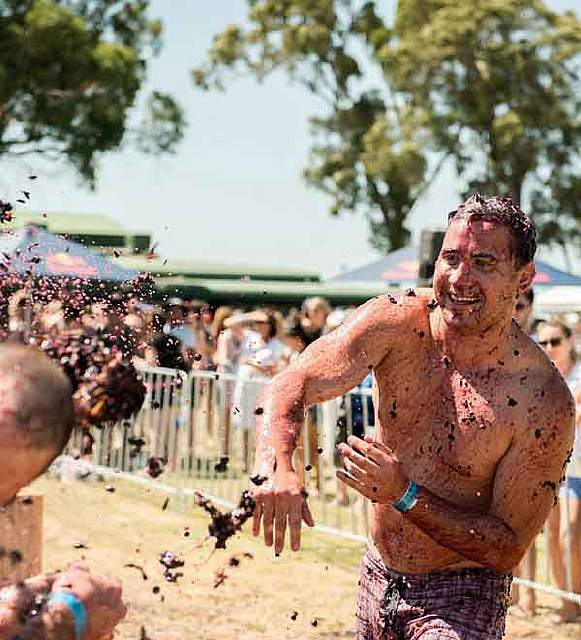 unique-festivals-around-the-world-grape-throwing-of-the-grape-australia