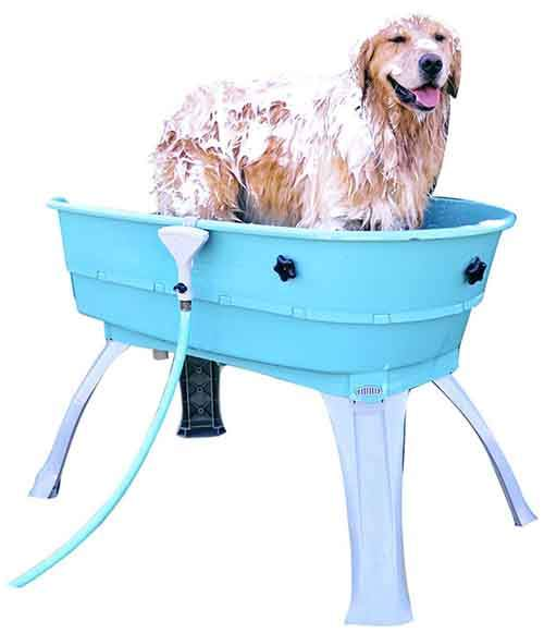 DOG-WASH-TUB