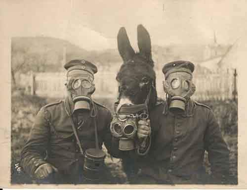1916.-Two-German-soldiers-and-their-mule-wearing-gas-masks-in-WWI-1916