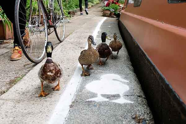 lane-duck-path-london-sharethespace-3