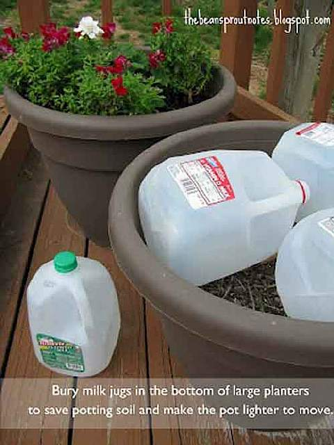 24-Highly-Creative-and-Clever-Gardening-Tricks-to-Enhance-Garden-homesthetics-decor-9