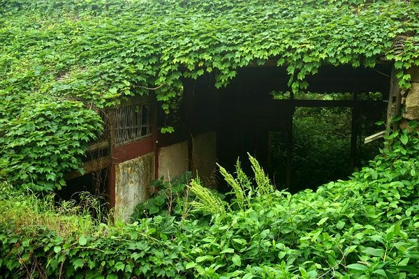 abandoned-village-zhoushan-china-1
