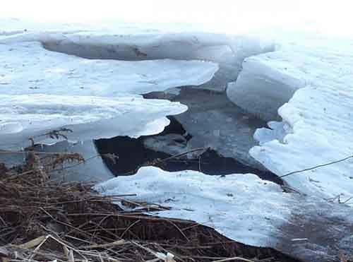 ice-march-570x423
