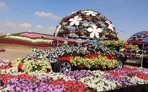 it-is-the-8th-wonder-of-the-world-unique-garden-in-dubai-will-surprise-even-the-most-avid-artnaz-com-10