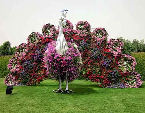 it-is-the-8th-wonder-of-the-world-unique-garden-in-dubai-will-surprise-even-the-most-avid-artnaz-com-11
