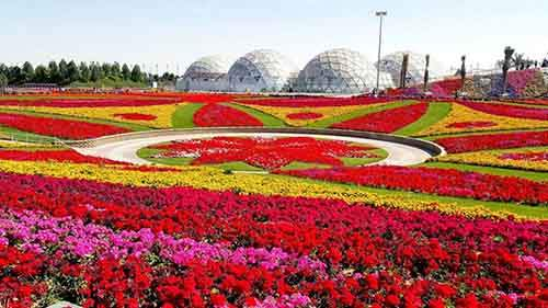 it-is-the-8th-wonder-of-the-world-unique-garden-in-dubai-will-surprise-even-the-most-avid-artnaz-com-17