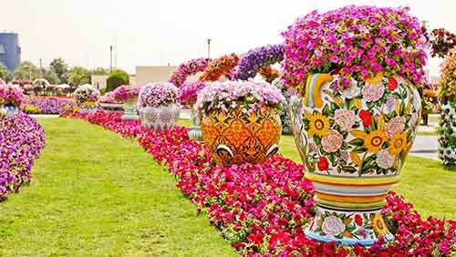 it-is-the-8th-wonder-of-the-world-unique-garden-in-dubai-will-surprise-even-the-most-avid-artnaz-com-19