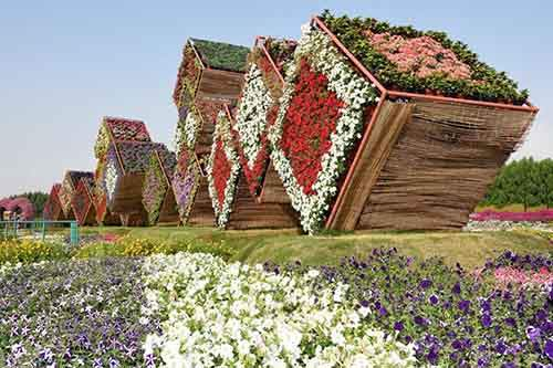 it-is-the-8th-wonder-of-the-world-unique-garden-in-dubai-will-surprise-even-the-most-avid-artnaz-com-9